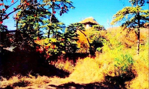 景区景点 北京 北京 打印此攻略    蟒山森林公园位于昌平县城东北